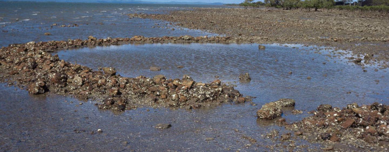 Indigenous use of coastal resources