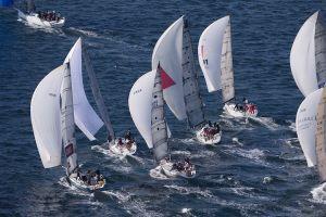 SAILING - Audi Sydney to Gold Coast 2012