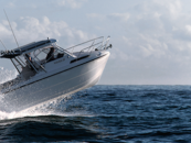 Wyld About Boats appointed as Kevlacat Dealer