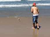 Beach fishing for big whiting
