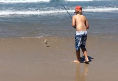 Beach fishing for big whiting