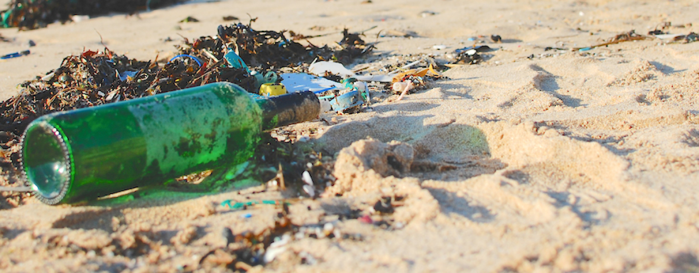 Give a hoot, don't pollute: Marine pollution laws in Queensland
