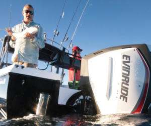 go evinrude outboards