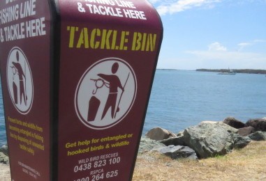 Tackle Bin Project