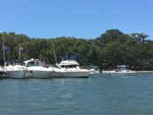 Summer Holidays on the Broadwater