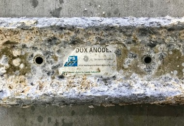 All About Anodes