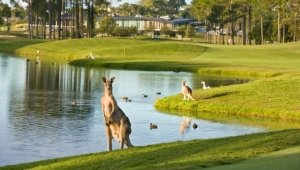 Sanctuary Cove Golf & Country Club