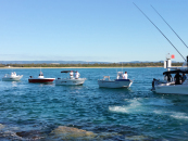 Boats Tie Up for a Clean-Up
