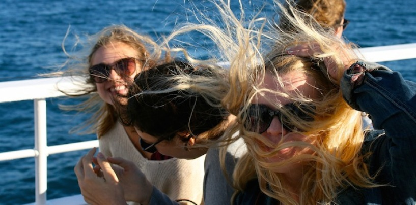 Hair On Board