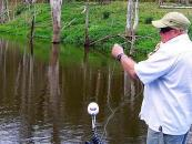 Gold Coast Fly Fishing