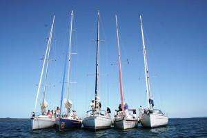 manly sailing boat gold coast