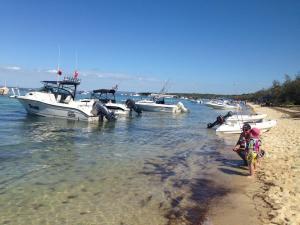 peel island boat gold coast 3
