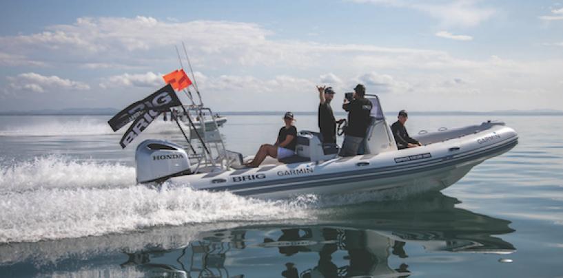 All Aboard for the Brig Safari 2020
