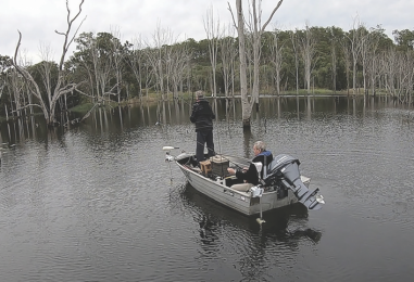 Wintery Wyaralong: Bass and Mary River Cod